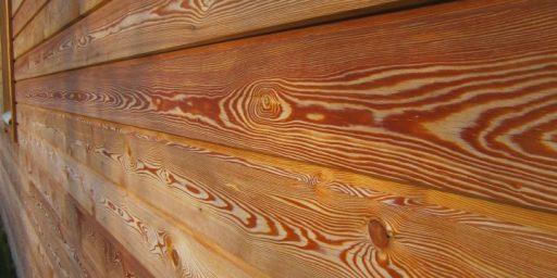 9 välitöödeks sobilikku puuliiki