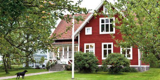 Rootsi punane – populaarne nii Skandinaavias kui ka Eestis