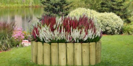 Oma aia planeerimine – millest alustada?