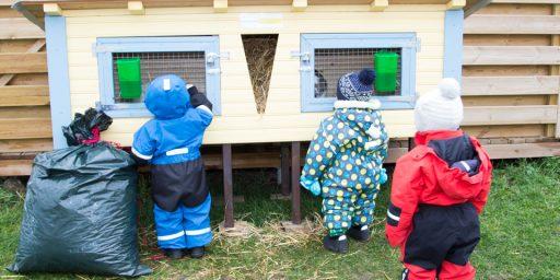 Puumarket aitas teostada lasteaia unistust võtta lasteaia õuele elama jänkupaar!